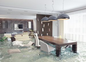 water damage services pittsburgh, water damage pittsburgh