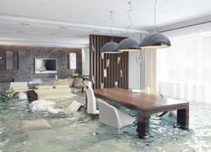 water damage services pittsburgh, water damage cleanup company pittsburgh